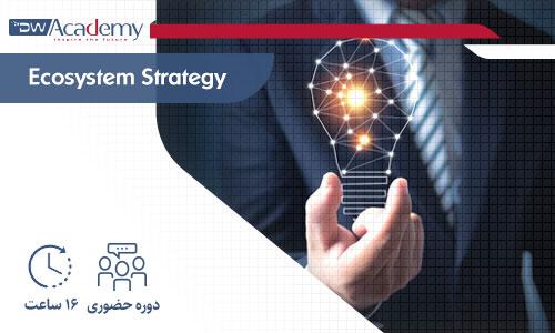 Digiwise Academy Ecosystem Strategy Onsite