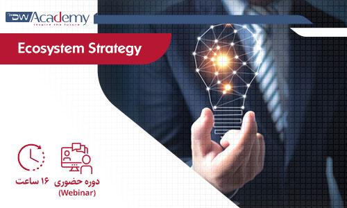 Digiwise Academy Ecosystem Strategy Webinar