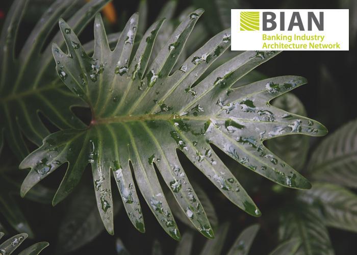 سناریوهای کسب و کار در BIAN و کاربرد آن ها