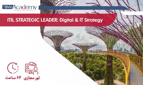 تور آموزشی STRATEGIC LEADER Digital & IT Strategy